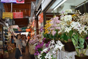 Khun Ooi looking at flowers at JJ market
