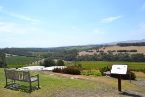 View from the Kay brothers cellar door